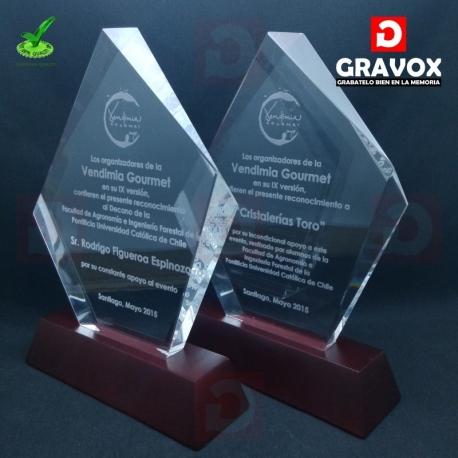 Galvano de Cristal modelo PBM, Grabado Láser gratis